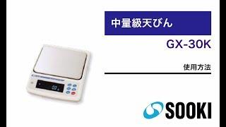 電子はかり GX-30K(0.1g/31kg)