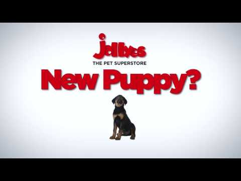 Royal Canin Puppy Packs Exclusive to Jollyes Pet Superstores