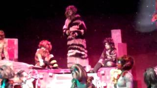 The Moments Of Happiness/Memory - Arundel High School production of Cats