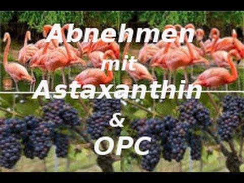Abnehmen mit Astaxanthin & OPC (Traubenkernextrakt) * Antioxidantien * meine Erfahrungen * Wirkung