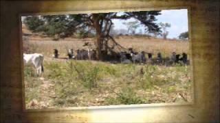 El Marido Celoso (Audio) - Rafael Martinez  (Video)
