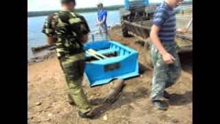Рыбалка на тарме в братске
