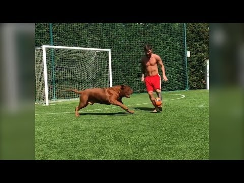 Lionel Messi Plays Football With His Pet Dog Hulk