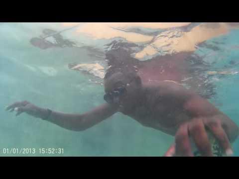 dennis diving