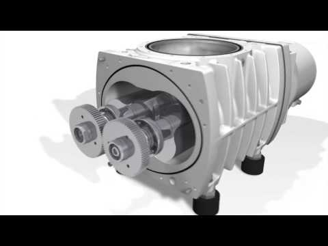 Ruvac WH(U) Roots Vacuum Pumps