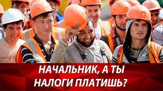 Как платить налоги строителям? ИП или ООО для строительства открыть? Налогообложение для строителей