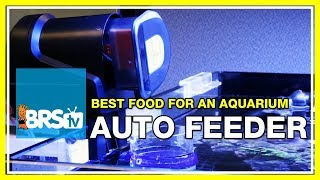 FAQ #8: What's a good food to use with auto feeders for fish & corals? | 52 FAQ