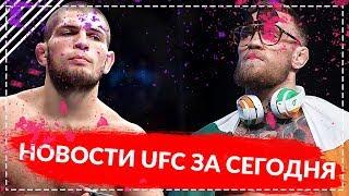 Новости UFC и MMA сегодня. Ортега хочет бой с Хабибом. Адвокат Конора Макгрегора намерен отклонить
