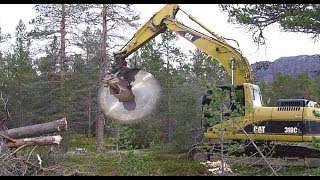 Amazing Latest Destroys & Cutting Tree Excavator Machine - Equipment Processing Tree Machine