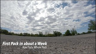 First pack in about a week, Raw Pack/Whole Pack - FPV Freestyle