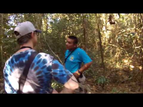 Adventure Unscripted -Punta Laguna Monkey Reserve, Yucatan Peninsula, Mexico