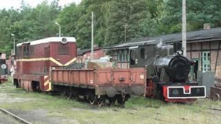 preview picture of video 'Parowóz Las 49 - 3343 Rudy cz1'