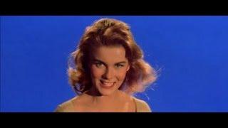 #347) BYE BYE BIRDIE (1963)