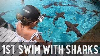 Kids Swimming with Sharks!! /// WEEK 107 : Bahamas - Video Youtube