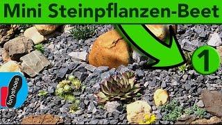 Miniatur Steingarten anlegen - Do It Yourself