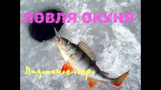 Рыбалка на ладожском озере ленинградская область