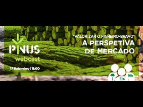 """PINUS Webcast """"Valorizar o pinheiro-bravo"""" – a perspetiva de mercado"""""""