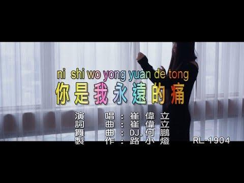 崔偉立-你是我永遠的痛 (DJ版)(1080P) KTV