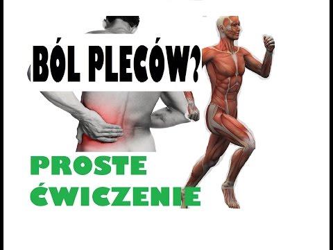 Zdjęcia białek mięśniowych