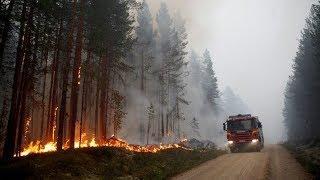 Итальянские самолёты помогают тушить лесные пожары в Швеции