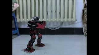 Robonova II / Metalfighter Gangnang Style