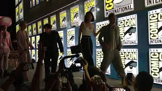 Fantastic Beasts: The Crimes of Grindelwald panel presentation at Hall H