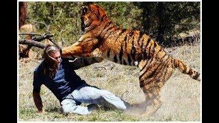 Нападения Диких Животных На Людей Топ Подборка