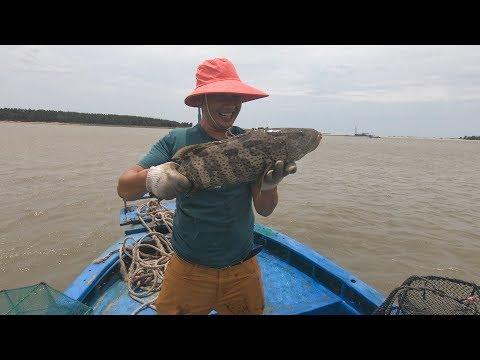 开海了玉平出海干一单大的,抓到条巨型石斑鱼,被阔气老板娘全收了