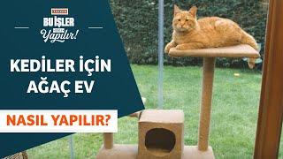 Kediler İçin Ağaç Ev Nasıl Yapılır?