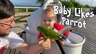 Baby Likes Seeing Parrot Outside