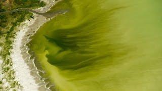 Utah Fresh Water Lake Turns Toxic Anti-Freeze Green with Foam ties with Bible Prophecy!