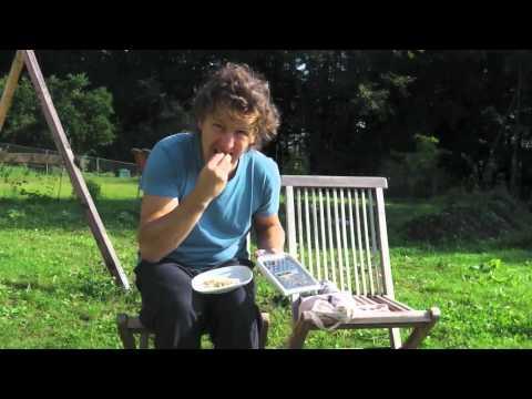 Die Behandlung vom Birkenpech der Schuppenflechte
