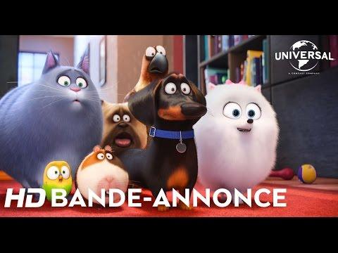 Comme des bêtes Universal Pictures International France / Illumination Entertainment