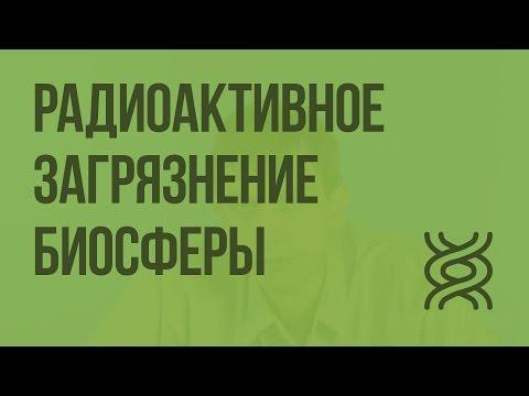 Радиоактивное загрязнение биосферы. Видеоурок по биологии 11 класс