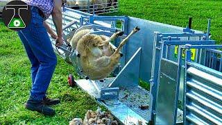 Modern Farming Machines & Technology For Amazing Productivity