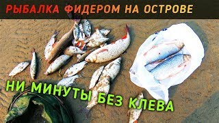 Рыбалка на маяке в новосибирске как проехать