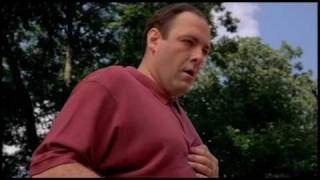 The Sopranos Episode 1 Ducks Depart The Pool & Tony Has a Panic Attack