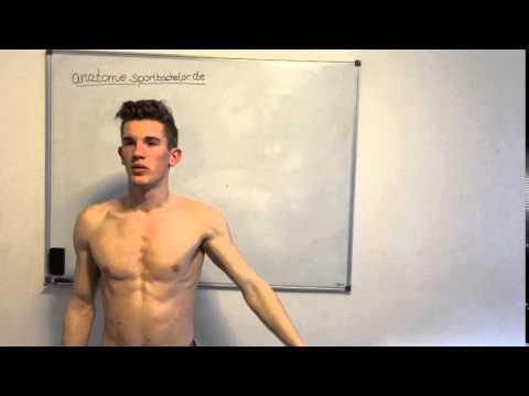 Was ist, wenn die Rückenschmerzen im Bereich der Brustwirbelsäule zu tun