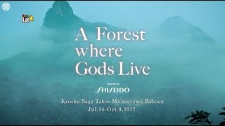 """360 degree video:  """"teamLab: A Forest Where Gods Live Art Exhibition presented by Shiseido""""