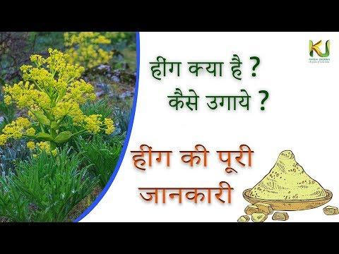 Hing ki Puri Jankari