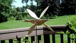 My Maimed Duck's Prosthetic Wings