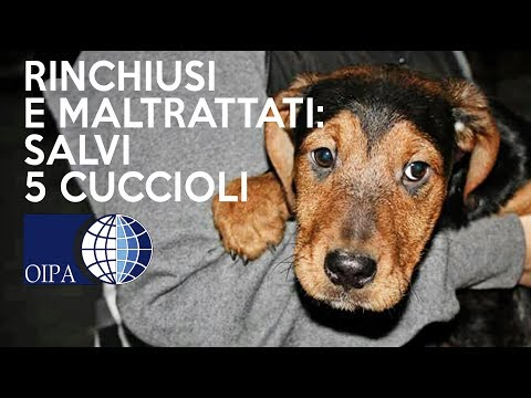 Chi cura lalcolismo in Krasnodar