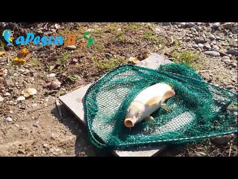 La pesca per bambini di 5-6 anni di un gioco