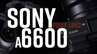Sony a6600 Mirrorless Digital Camera | First Look