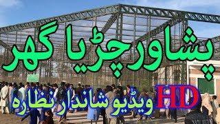 Peshawar Zoo Near Peshawar University Latest Video 2018 Full HD 1080p