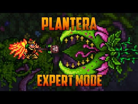 Boss Guide for Terraria - Plantera - Wattpad