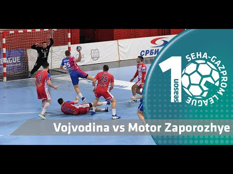 Great team play by Vojvodina squad! I Vojvodina vs Motor Zaporozhye I Match highlights