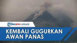 Puncak Gunung Merapi Kembali Gugurkan Awan Panas Setinggi 500 M Sabtu Pagi Ini
