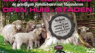 Natureplay telt af naar schone schaapjes!