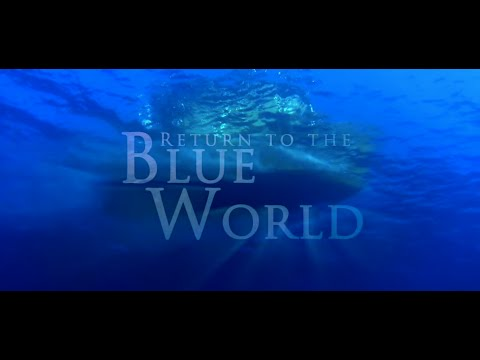 Return to the Blue World - Embudu Malediven - Canon Powershot D20 - GoPro Hero3 Black Edition